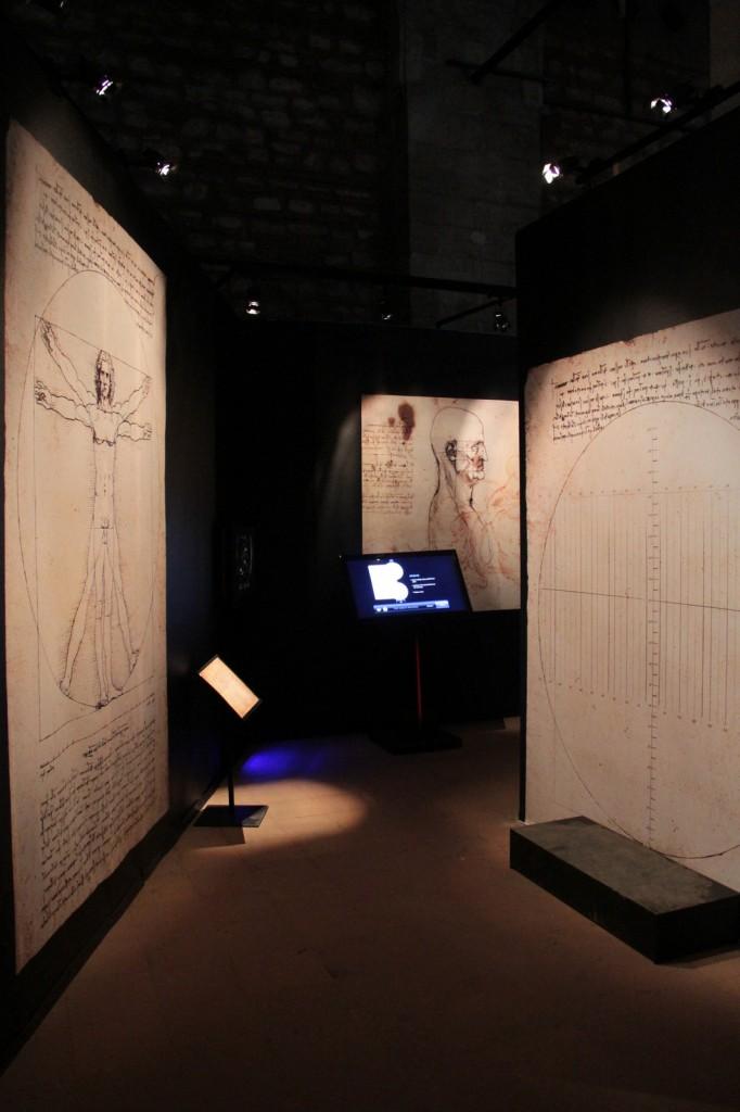 Vitruvius İnsanı - The Great Masters Sergisi: Leonardo, Michelangelo ve Raffaello Fotoğraf: Reha Başoğul